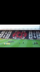 The poppy display