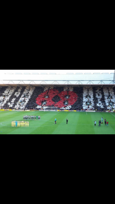 The poppy display