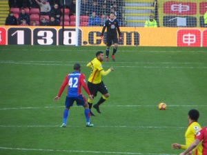 Etienne Capoue on the ball